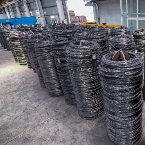 10B21 Steel Wire